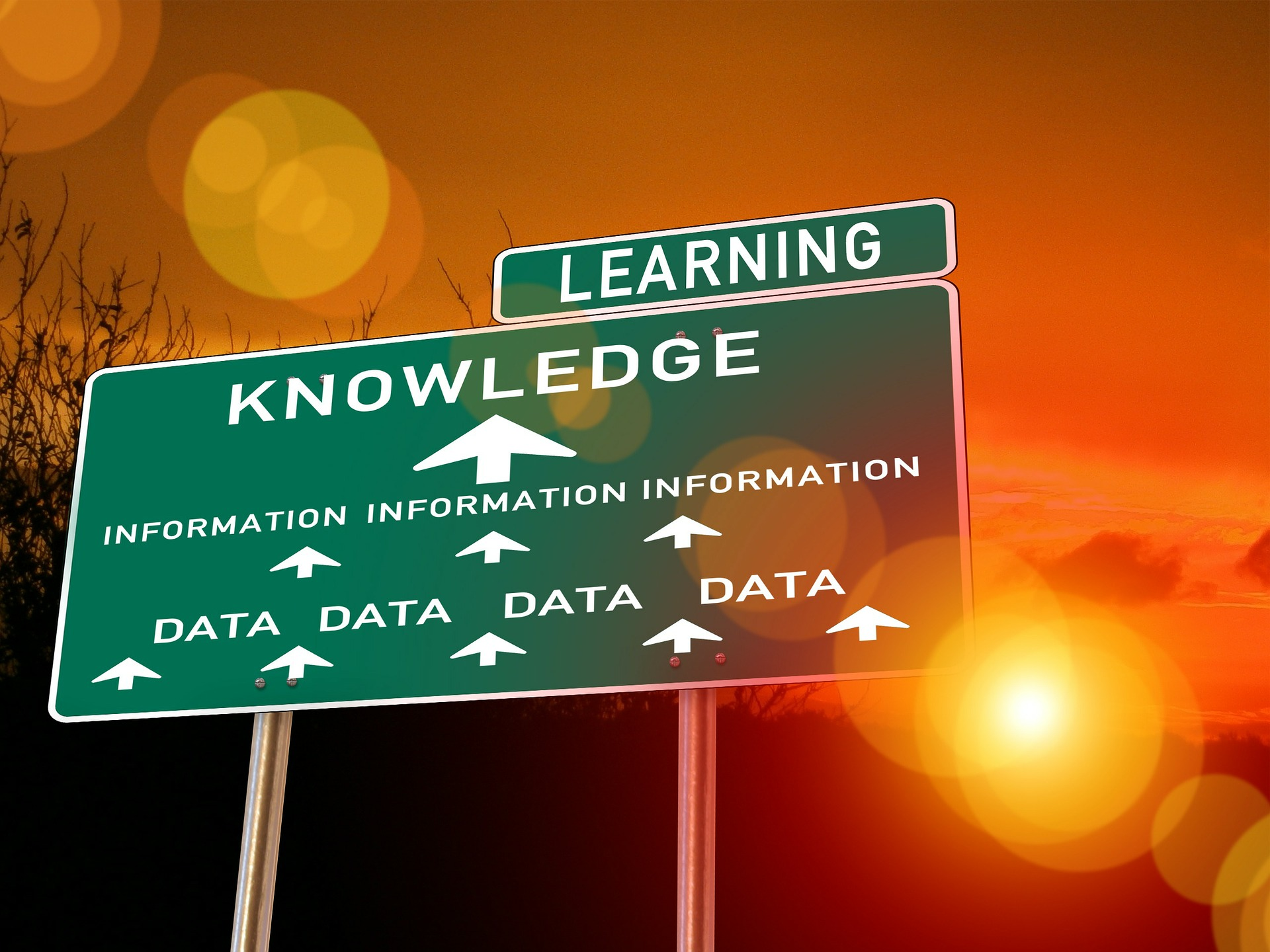 Road sign showing pointing the way to greater knowledge through white papers